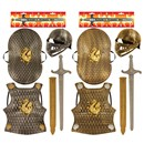set includes breast plate, shield, helmet  with visor and sword. Breast plate 37 x  29cm.  Age 3+.